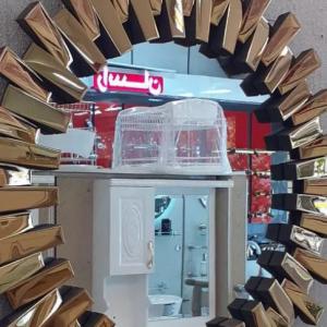 سرویس بهداشتی( آینه استیل)