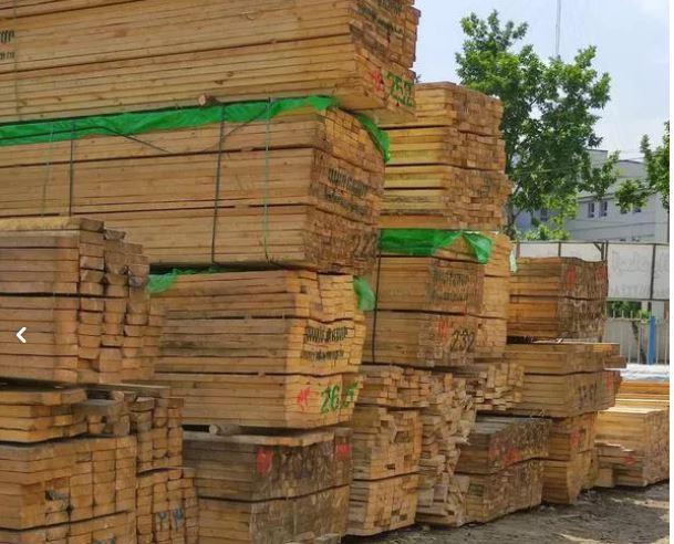 فروش چوب نراد واقعی سربندی فروش حلب در گیلان رشت
