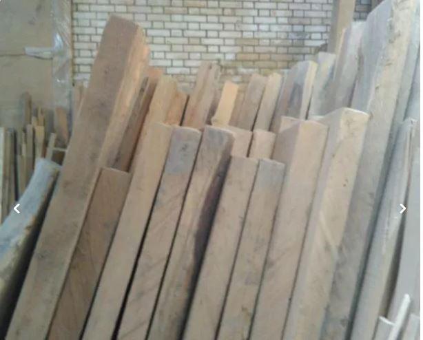 فروش چوب ملچ و راش